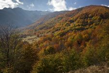 Free Autumn Landscape Royalty Free Stock Photo - 17992485