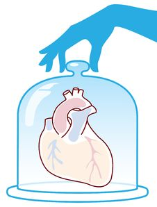 Free Heart Is Protected By A Bell Jar. Stock Photo - 17993380