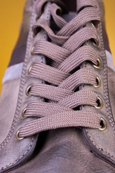 Free New Shoes Stock Photography - 17993802