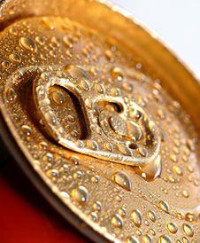 Free Golden Wet Tin Royalty Free Stock Photo - 17993975
