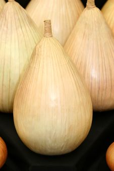 Free Onions Make You Cry Royalty Free Stock Photos - 180758