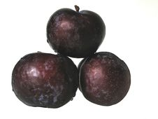 Free Plums Stock Photo - 183560