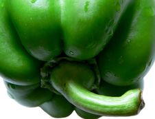 Free Green Pepper 5 Stock Photos - 183753