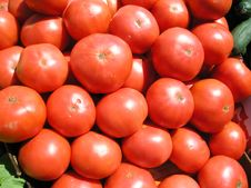 Free Tomatoes Closeup Stock Images - 185494