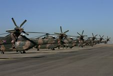 Free Oryx Helicopter Tails Stock Image - 188091