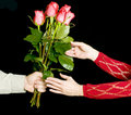 Free The Gift Of Roses Stock Photography - 1809182