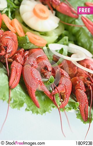 Free Plate With Red Lobsters Royalty Free Stock Photos - 1809238