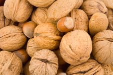 Nuts, Walnuts, Hazelnuts, Almonds Royalty Free Stock Images