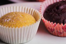 Two Cupcakes Royalty Free Stock Image