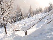 Free Winter Stock Photo - 1804270