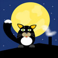 Free Black Cat On Roof Royalty Free Stock Image - 18004956
