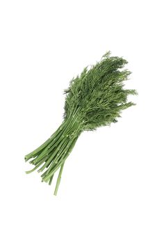 Free Bunch Dill Herb Royalty Free Stock Photo - 18002915
