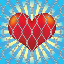 Free Heart For Mesh Fence. Stock Photo - 18002920