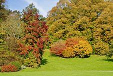 Free Autumn Colours In An English Park Stock Photos - 18003613