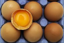 Free Eggs In Tray. Stock Images - 18004994