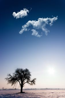 Free Clouds Stock Photos - 18005303