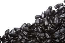 Free Big Black Seeds Stock Photo - 18007380