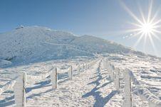 Free Winter Sun Stock Image - 18009701