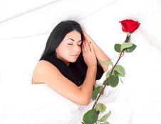 Sleeping Woman Stock Photography