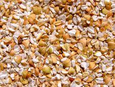 Free Buckwheat Texture Background Stock Image - 18011421