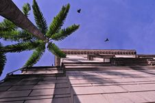 Free Historical Building , Birds Royalty Free Stock Photos - 18013888
