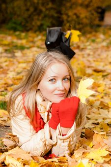 Charming  Woman In An Autumn Park Royalty Free Stock Photos