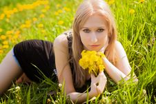 Woman With Dandelions Stock Photo