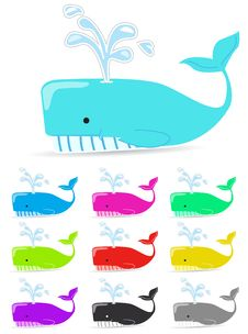 Color Whale Stock Images