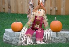 Free Scarecrow In The Autumn. Royalty Free Stock Photos - 18020608