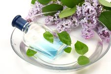Bottle And Branch Of A Lilac Stock Photos