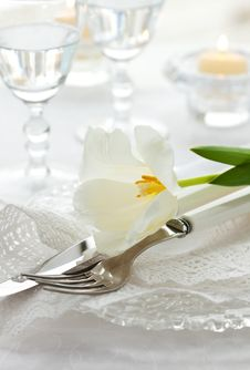 Free Place-setting With White Tulip And Napkin Stock Image - 18021651