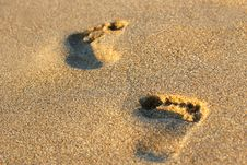 Free Footprints In The Sand Stock Photo - 18024130