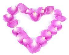 Pink Rose Petal Heart Royalty Free Stock Photos