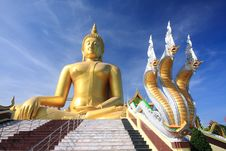 Free Big Golden Buddha With Blue Sky. Royalty Free Stock Photography - 18025267
