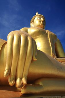 Free Big Golden Buddha With Blue Sky. Royalty Free Stock Image - 18025626