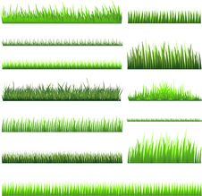 Free Green Grass Collection Royalty Free Stock Photo - 18028885