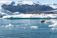 Free Jokulsarlon Lake Royalty Free Stock Images - 18035279
