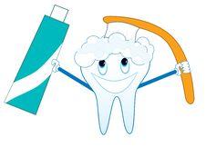 Washing Tooth Royalty Free Stock Photos