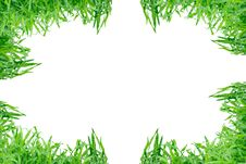 Free Grass Frame Isolated Royalty Free Stock Photo - 18037845