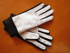 Free Stylish Women S Suede Gloves Stock Images - 18038984