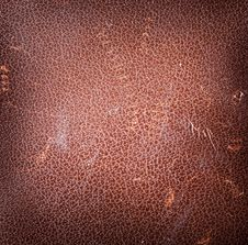 Free Texture Of Brown Skin. Stock Photography - 18041392