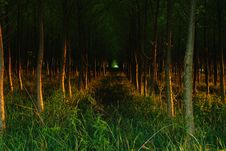 Free Sunset Stock Photography - 18042382