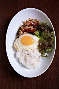 Stir Fried Spicy Chicken Thai Herb Stock Photo