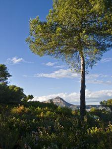 Free Mediterranean Landscape Stock Photography - 18047662