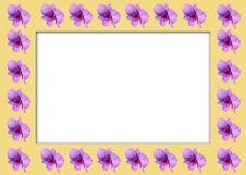 Free Orchid  Frame Stock Images - 18048834