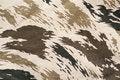 Free Camouflage Stock Image - 18051231