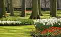 Free Holland Park Royalty Free Stock Photos - 18054648
