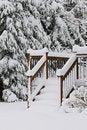 Free Winter Scene. Stock Photos - 18055973