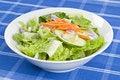 Free Bowl Of Salad Royalty Free Stock Image - 18057996