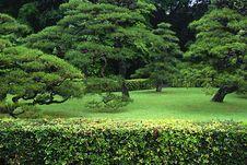 Free Shinto Shrine At Ise, Japan Stock Photography - 18056022